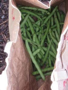w11.bag.beans