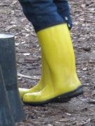 cvg16w10.boots3