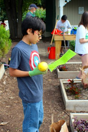2016 Children's Garden Celebration - 078