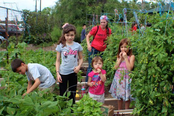 2016 Children's Garden Celebration - 120
