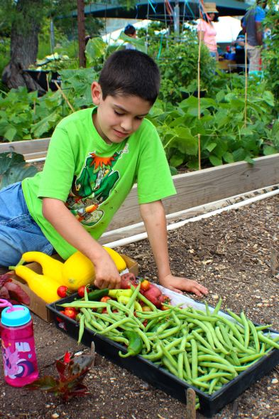 2016 Children's Garden Celebration - 124
