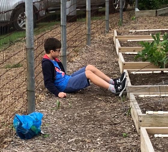 weary gardener