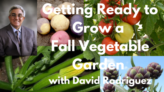 Getting Ready to Grow a Fall Vegetable Garden with David Rodriguez